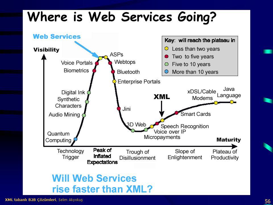 XML tabanlı B2B Çözümleri, Selim Akyokuş
