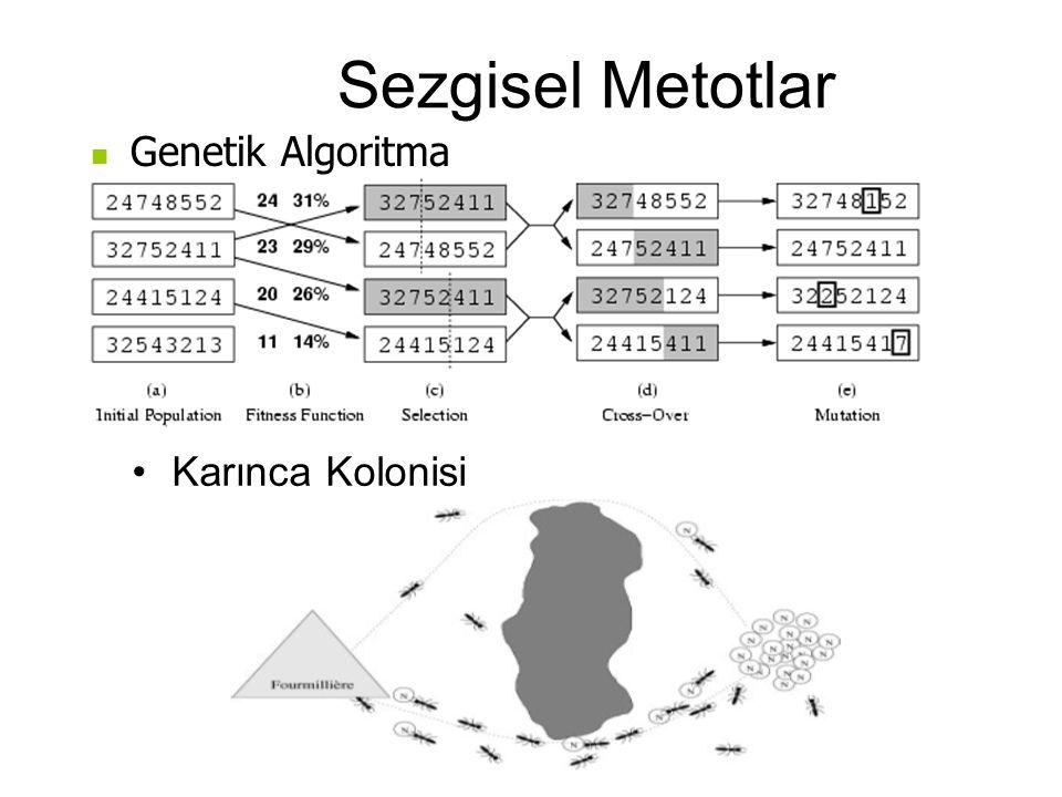 Sezgisel Metotlar Genetik Algoritma Karınca Kolonisi