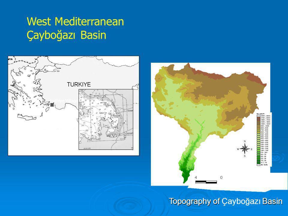 Topography of Çayboğazı Basin