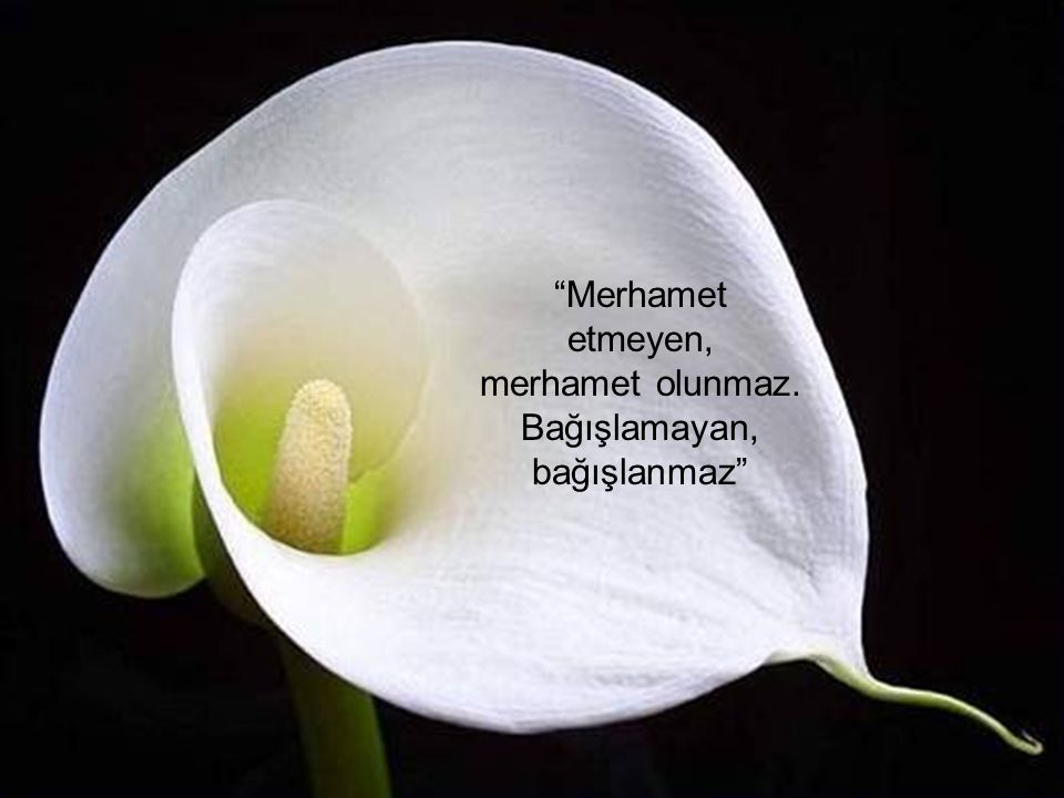 Merhamet etmeyen, merhamet olunmaz. Bağışlamayan, bağışlanmaz