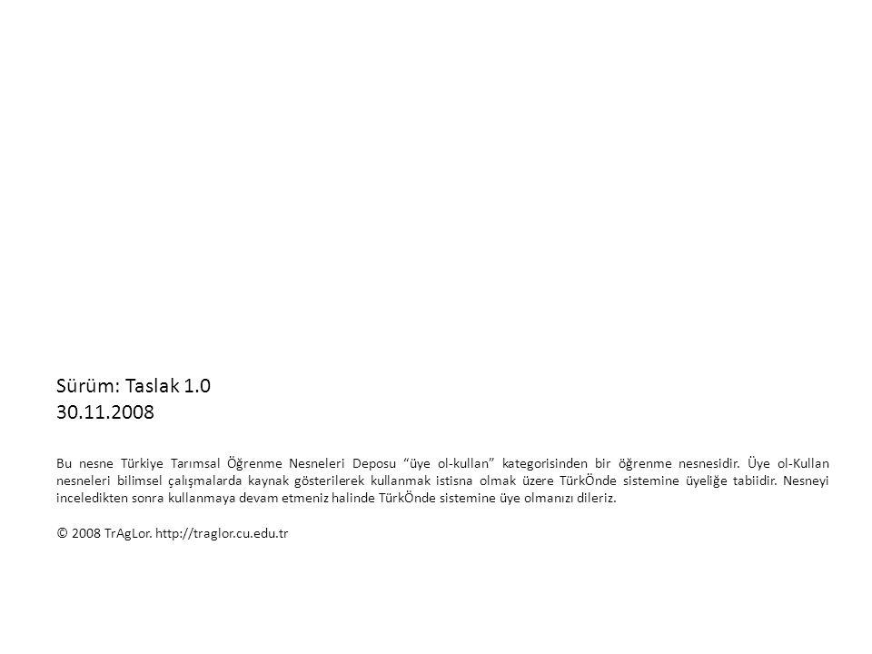 Sürüm: Taslak 1.0 30.11.2008.