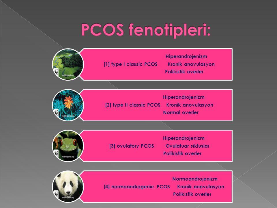 PCOS fenotipleri: Hiperandrojenizm