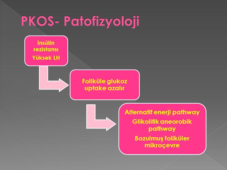 PKOS- Patofizyoloji Foliküle glukoz uptake azalır