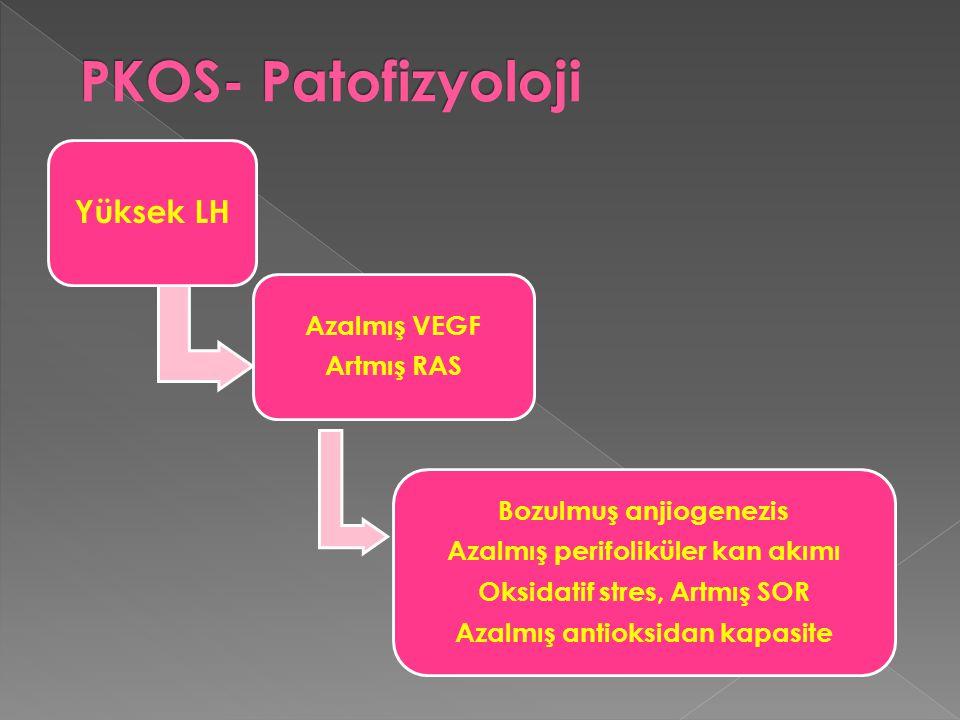 PKOS- Patofizyoloji Yüksek LH Azalmış VEGF Artmış RAS