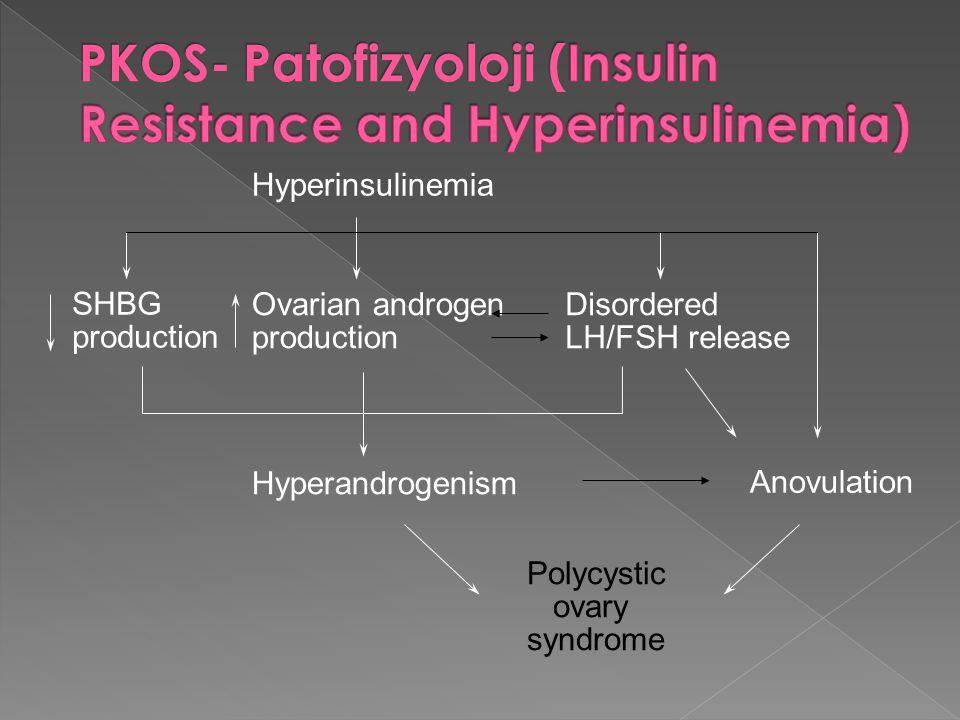PKOS- Patofizyoloji (Insulin Resistance and Hyperinsulinemia)