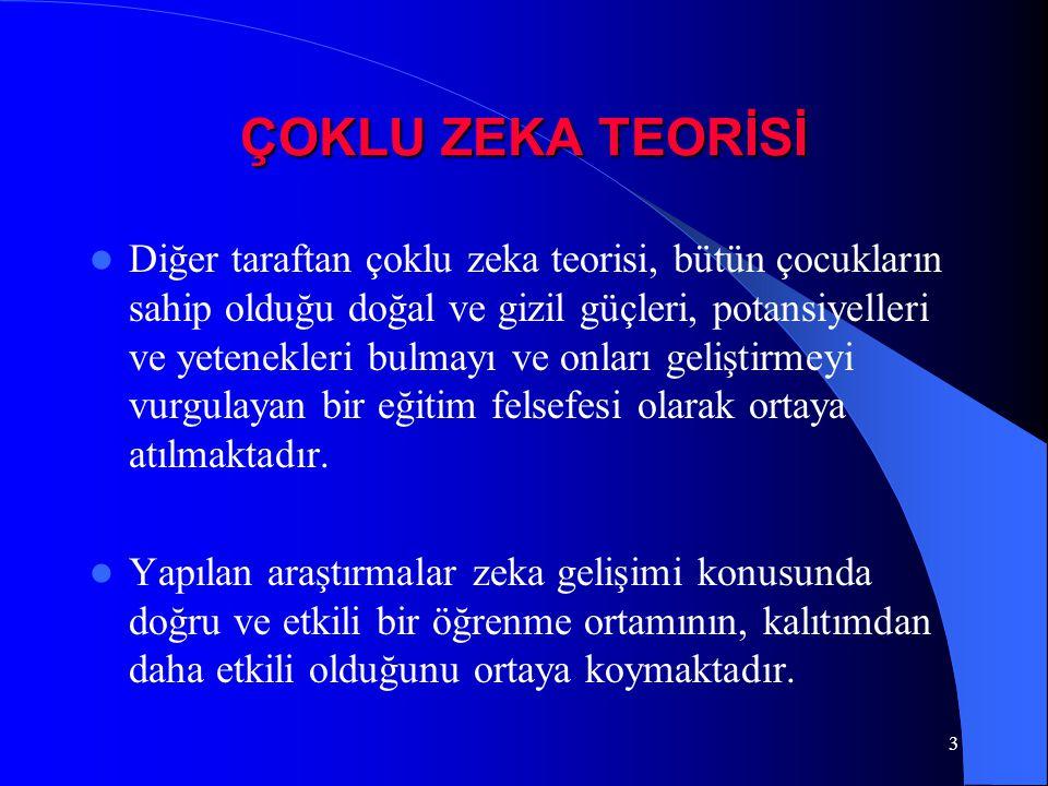 ÇOKLU ZEKA TEORİSİ