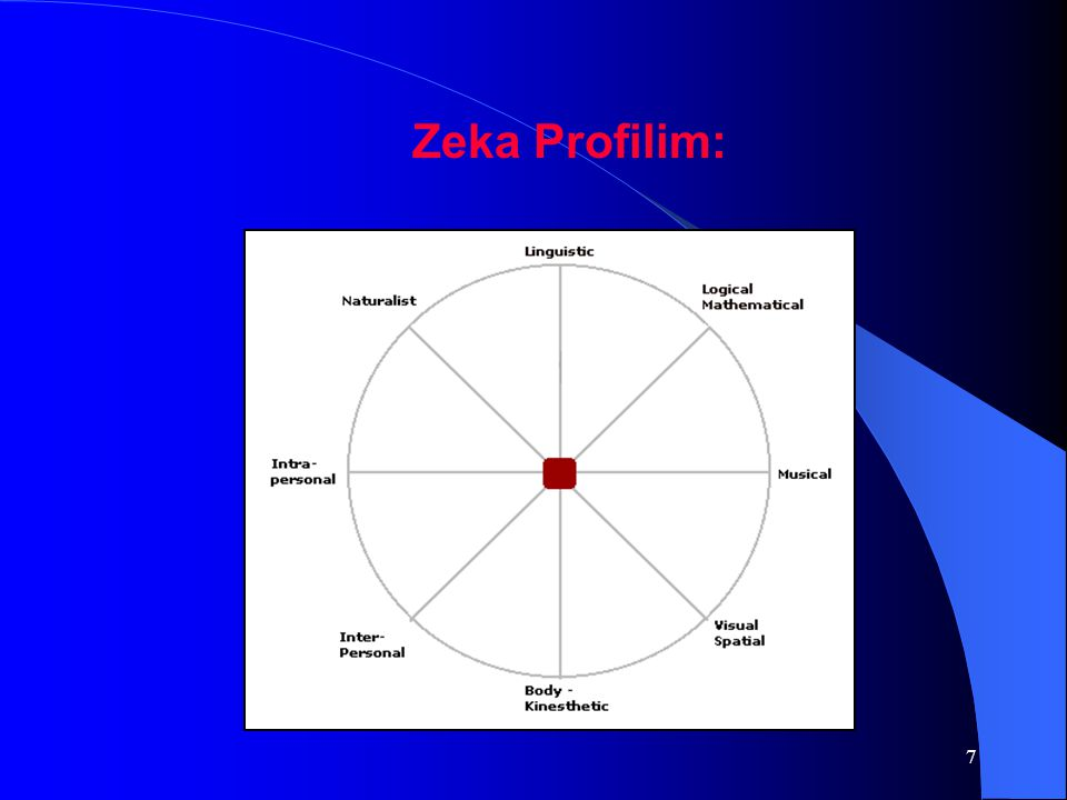 Zeka Profilim: