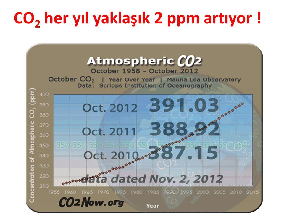 CO2 her yıl yaklaşık 2 ppm artıyor !