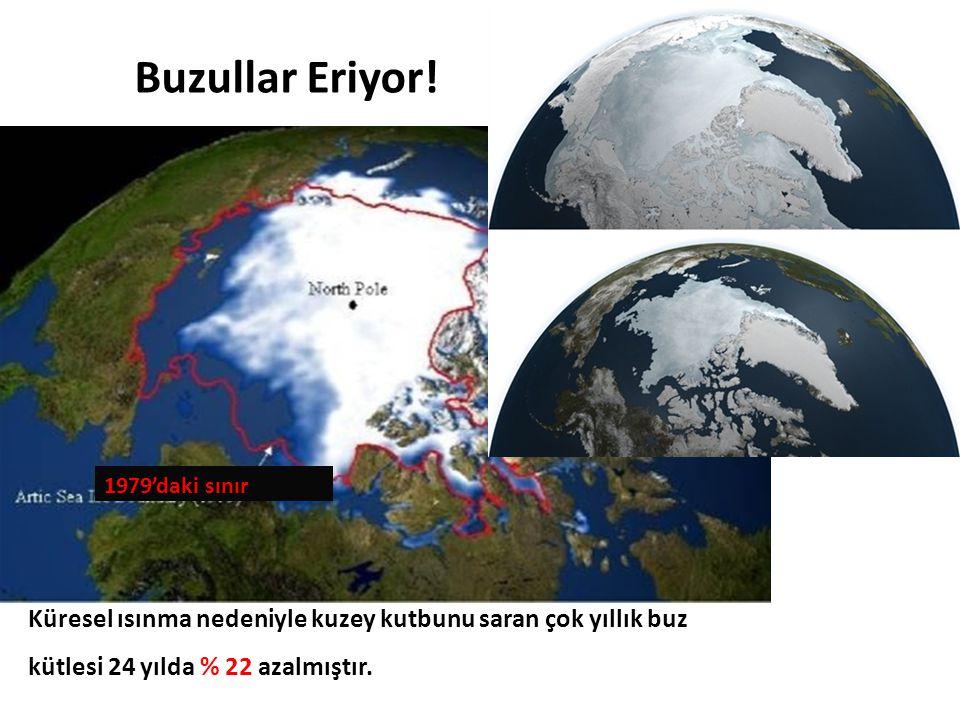 Buzullar Eriyor. 1979'daki sınır. Küresel ısınma nedeniyle kuzey kutbunu saran çok yıllık buz.