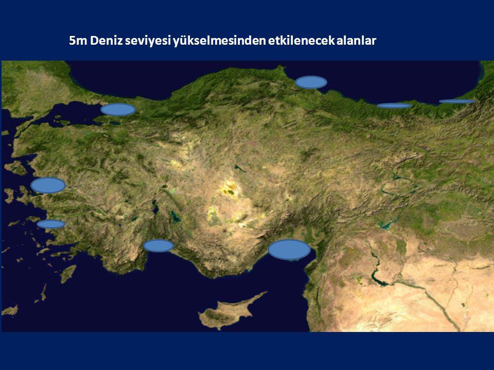 5m Deniz seviyesi yükselmesinden etkilenecek alanlar