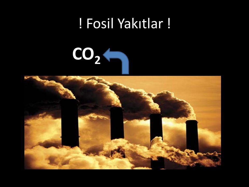 ! Fosil Yakıtlar ! CO2