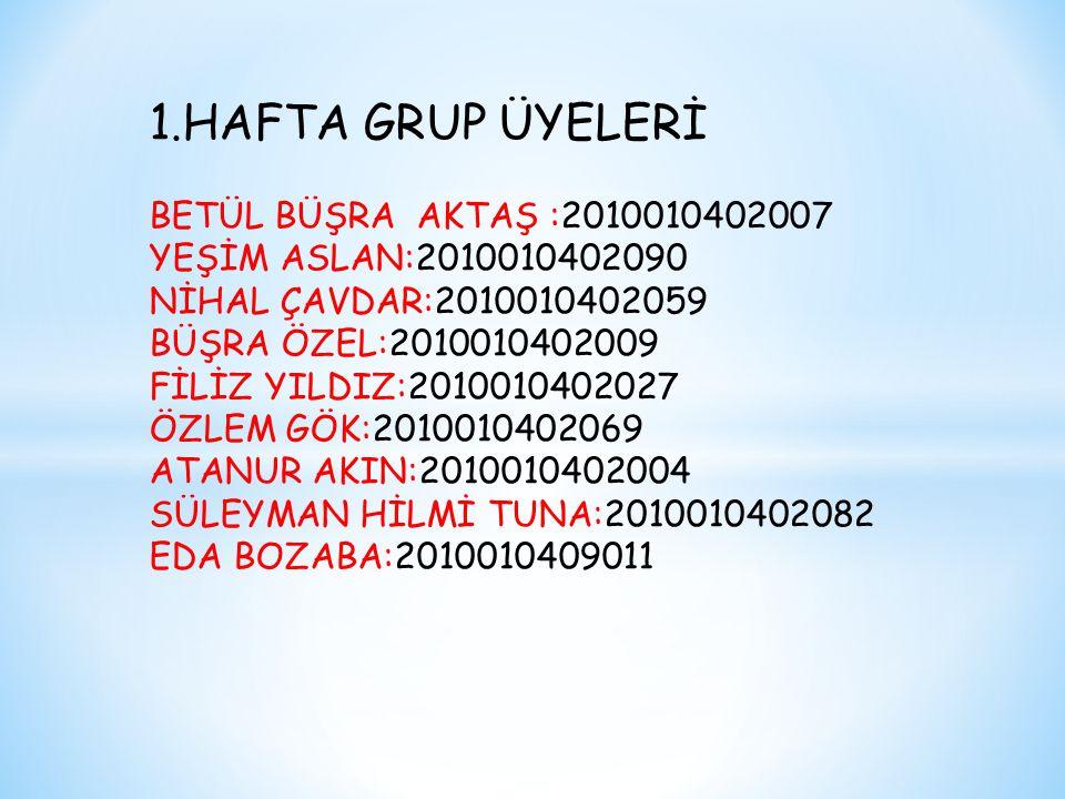 1.HAFTA GRUP ÜYELERİ BETÜL BÜŞRA AKTAŞ :2010010402007