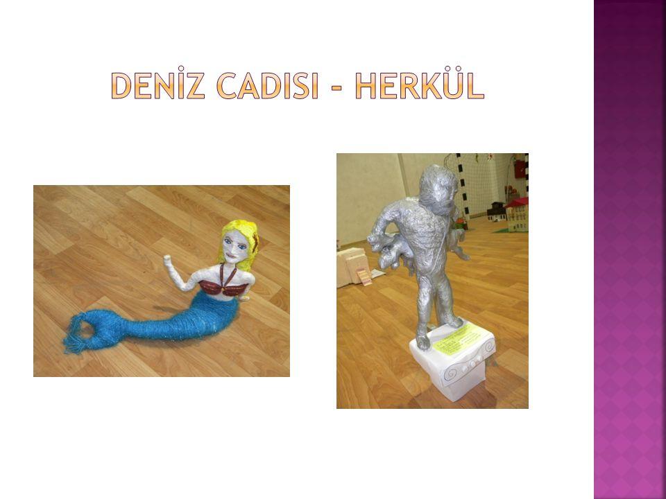 DENİZ cadisi - HERKÜL