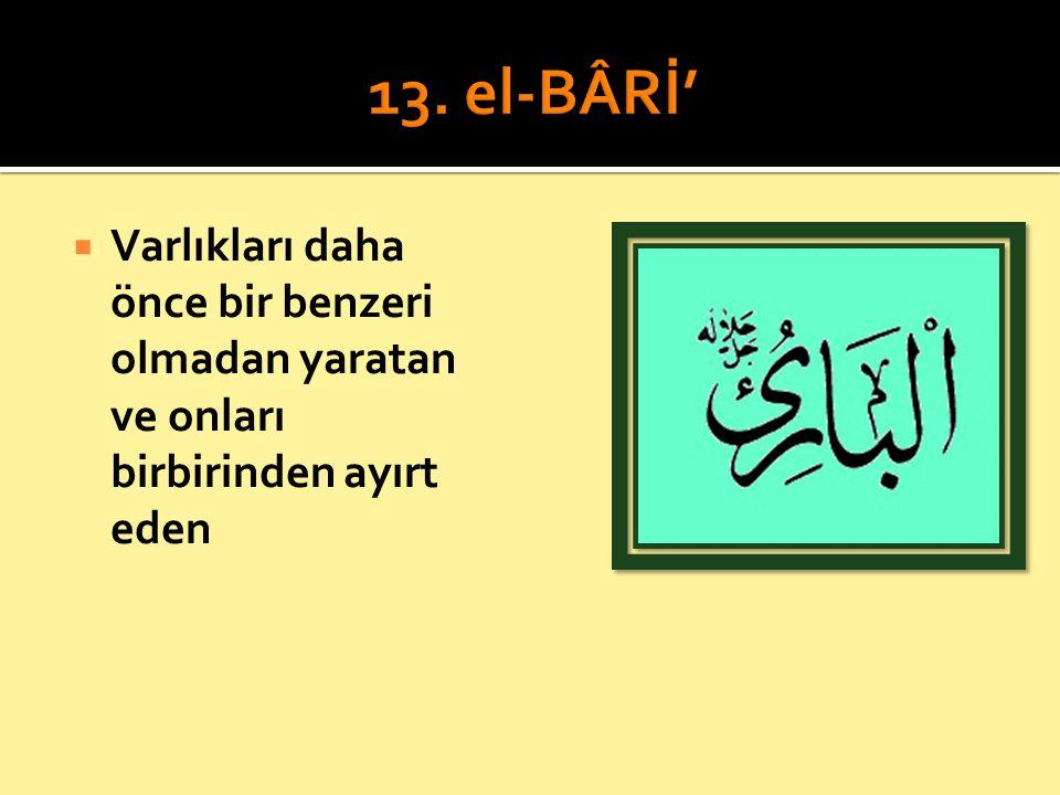 13. el-BÂRİ' Varlıkları daha önce bir benzeri olmadan yaratan ve onları birbirinden ayırt eden