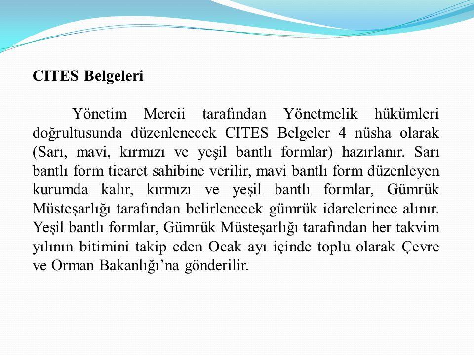 CITES Belgeleri