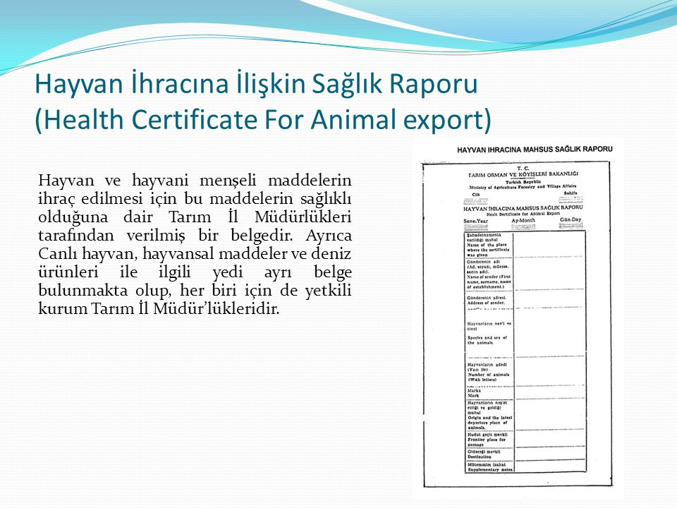 Hayvan İhracına İlişkin Sağlık Raporu (Health Certificate For Animal export)