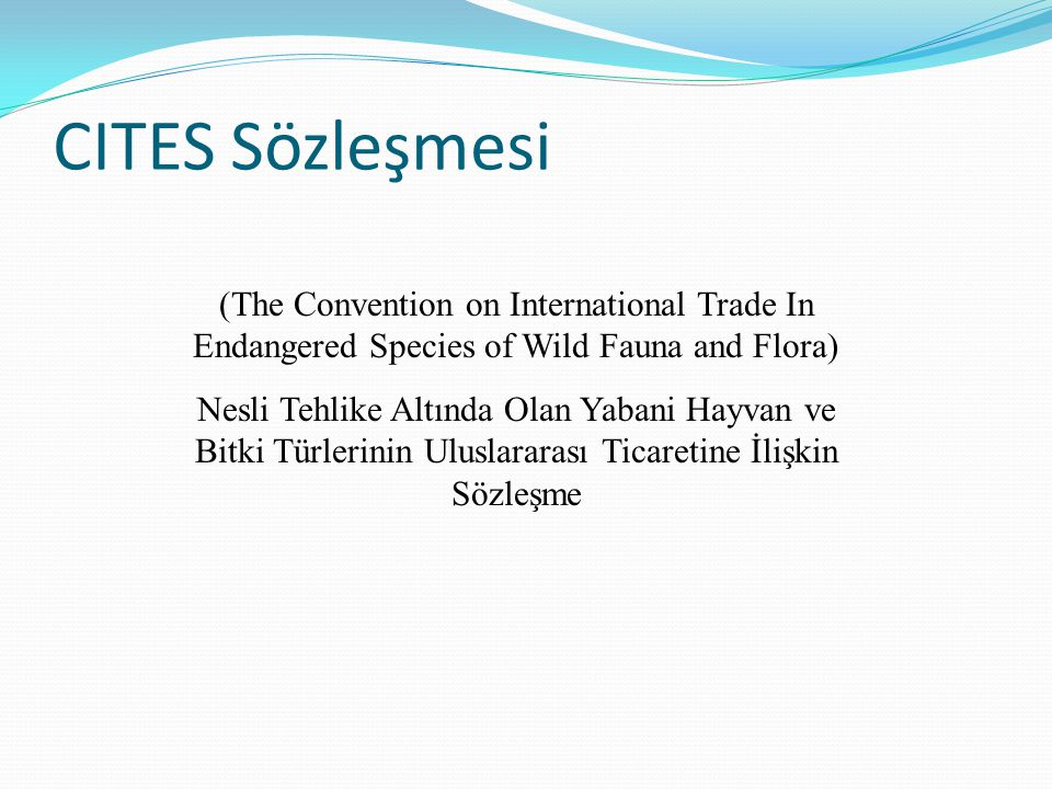 CITES Sözleşmesi (The Convention on International Trade In Endangered Species of Wild Fauna and Flora)