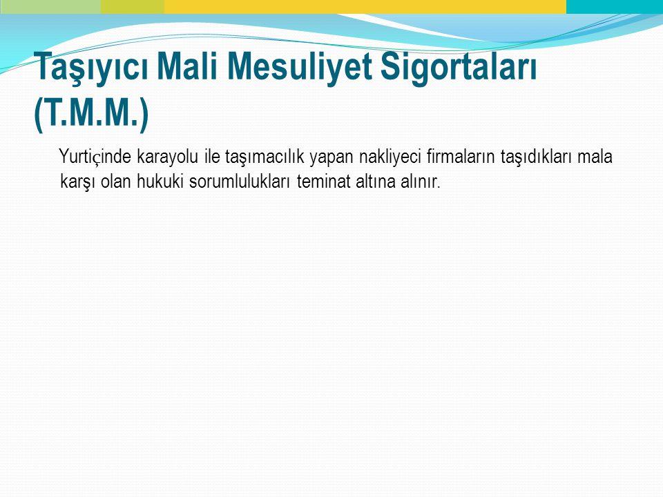 Taşıyıcı Mali Mesuliyet Sigortaları (T.M.M.)