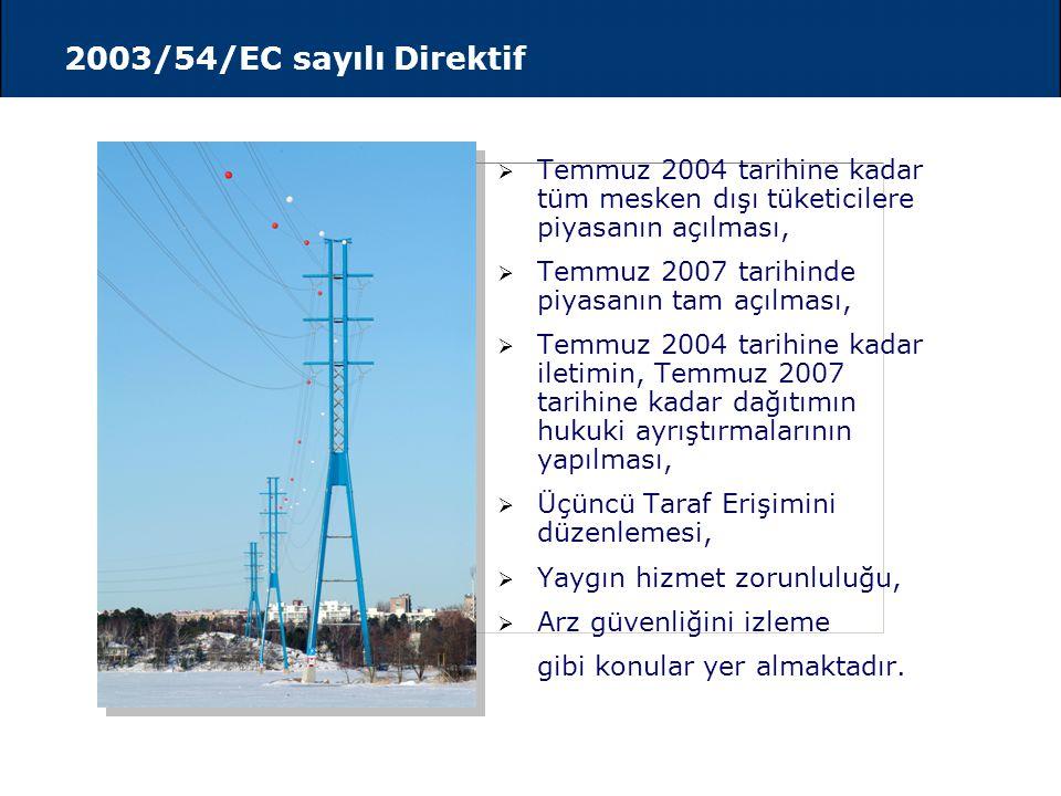 2003/1228/EC sayılı Yönetmelik (Regulation)
