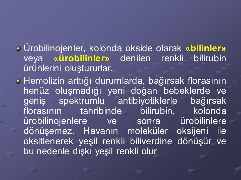 Ürobilinojenler, kolonda okside olarak «bilinler» veya «ürobilinler» denilen renkli bilirubin ürünlerini oluştururlar.