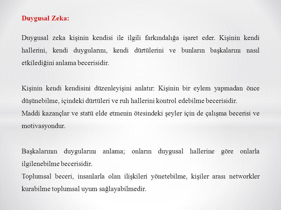 Duygusal Zeka: