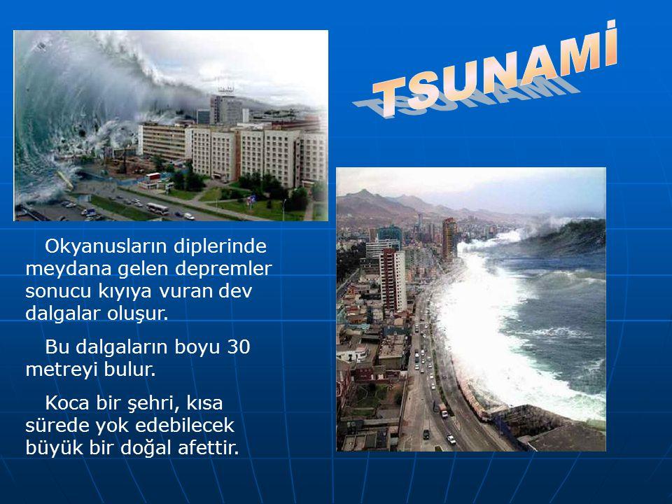 TSUNAMİ Okyanusların diplerinde meydana gelen depremler sonucu kıyıya vuran dev dalgalar oluşur. Bu dalgaların boyu 30 metreyi bulur.