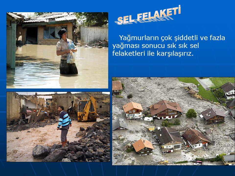 SEL FELAKETİ Yağmurların çok şiddetli ve fazla yağması sonucu sık sık sel felaketleri ile karşılaşırız.