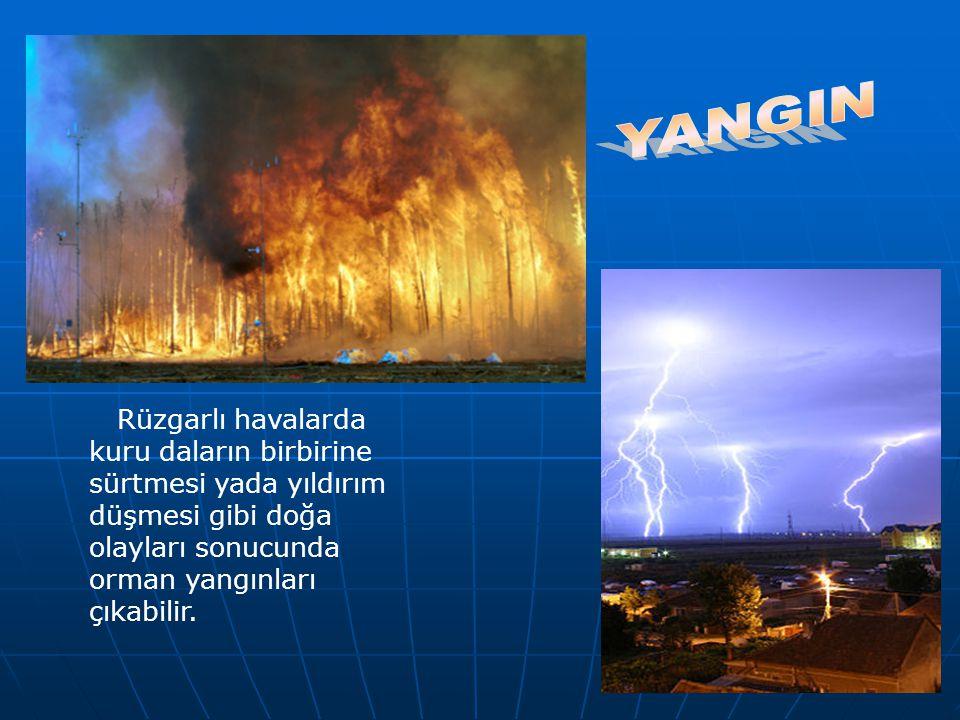 YANGIN Rüzgarlı havalarda kuru daların birbirine sürtmesi yada yıldırım düşmesi gibi doğa olayları sonucunda orman yangınları çıkabilir.