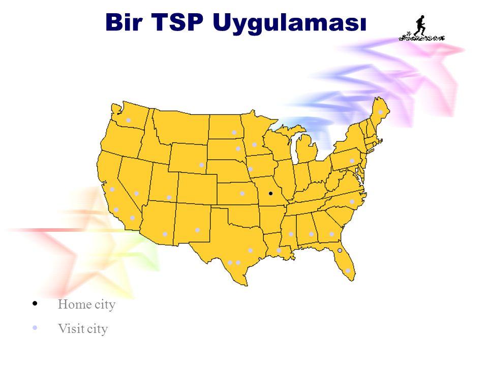 Bir TSP Uygulaması Home city Visit city