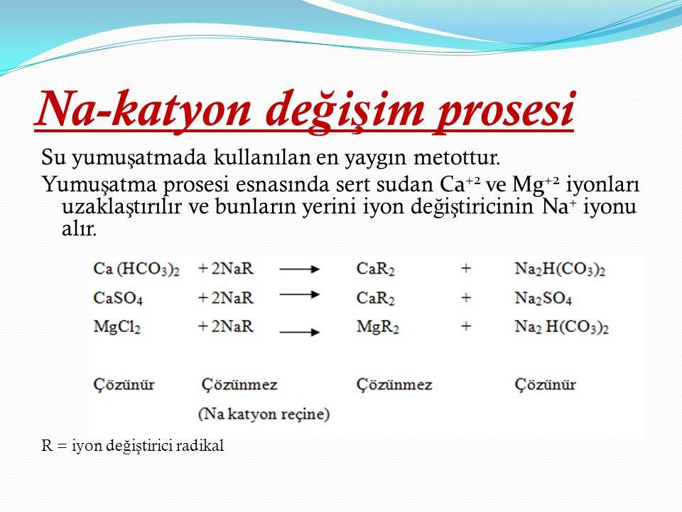 Na-katyon değişim prosesi