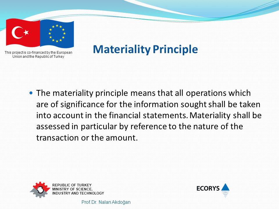 Materiality Principle