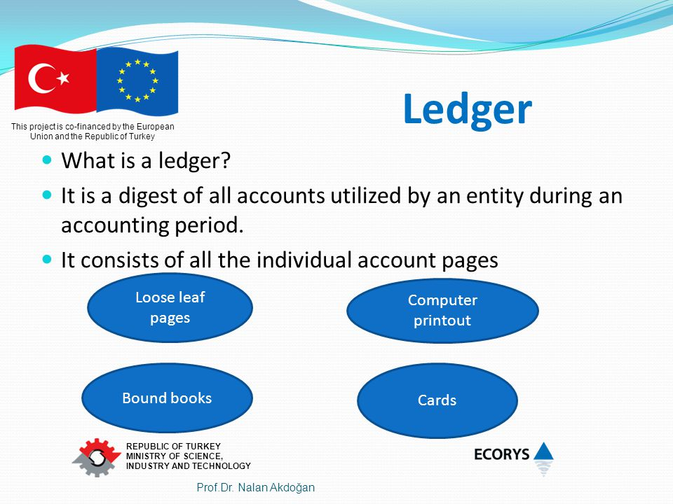 Ledger What is a ledger It is a digest of all accounts utilized by an entity during an accounting period.