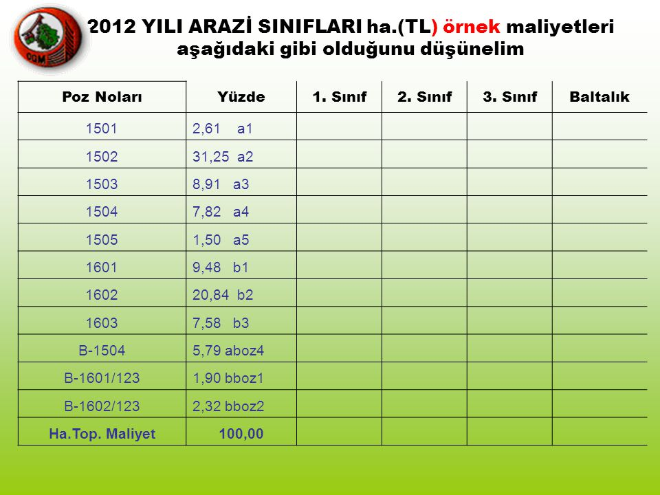 2012 YILI ARAZİ SINIFLARI ha