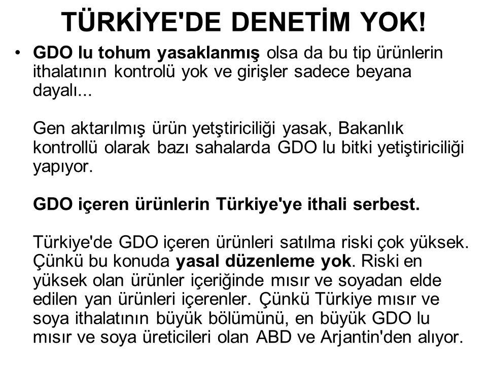 TÜRKİYE DE DENETİM YOK!