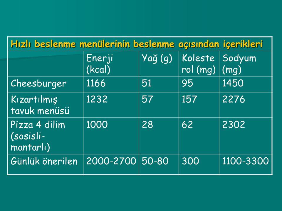 Hızlı beslenme menülerinin beslenme açısından içerikleri