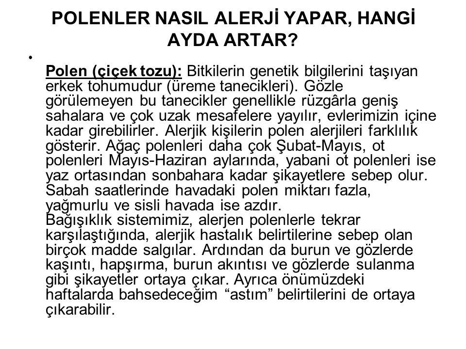 POLENLER NASIL ALERJİ YAPAR, HANGİ AYDA ARTAR
