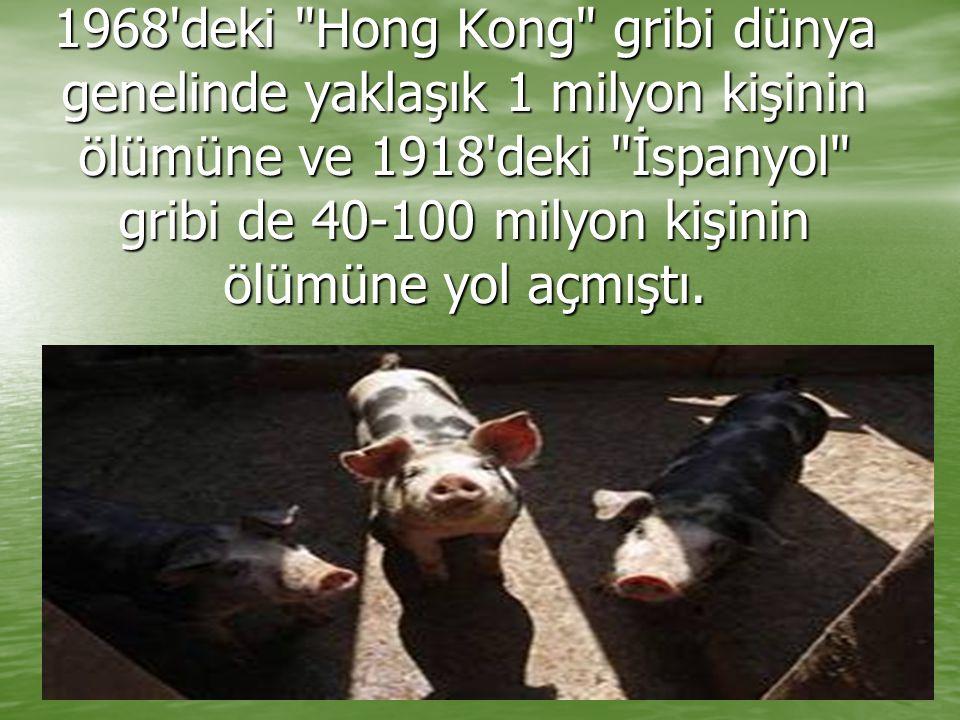 1968 deki Hong Kong gribi dünya genelinde yaklaşık 1 milyon kişinin ölümüne ve 1918 deki İspanyol gribi de 40-100 milyon kişinin ölümüne yol açmıştı.