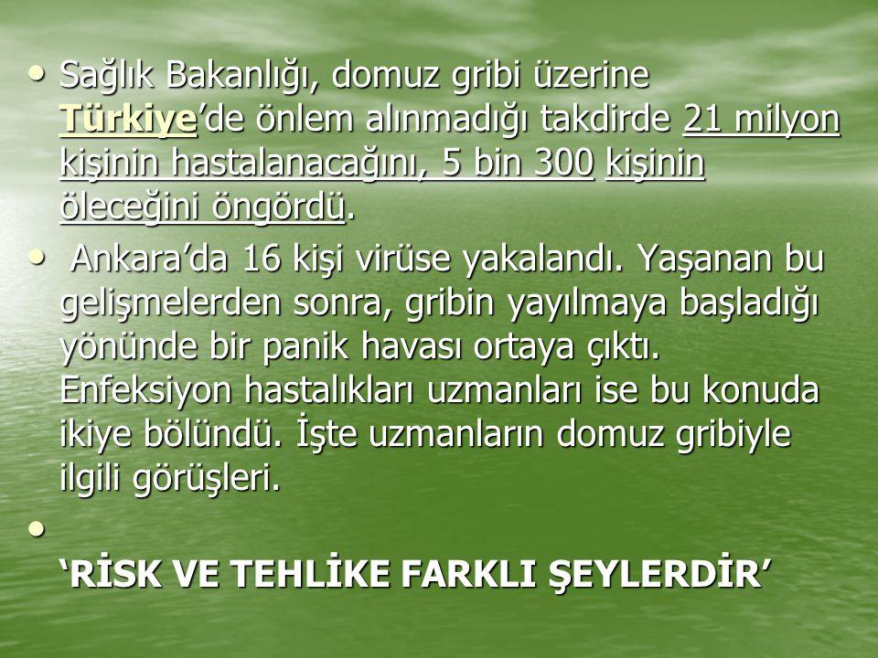 Sağlık Bakanlığı, domuz gribi üzerine Türkiye'de önlem alınmadığı takdirde 21 milyon kişinin hastalanacağını, 5 bin 300 kişinin öleceğini öngördü.