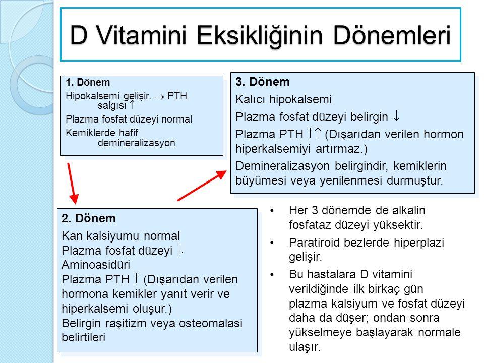D Vitamini Eksikliğinin Dönemleri