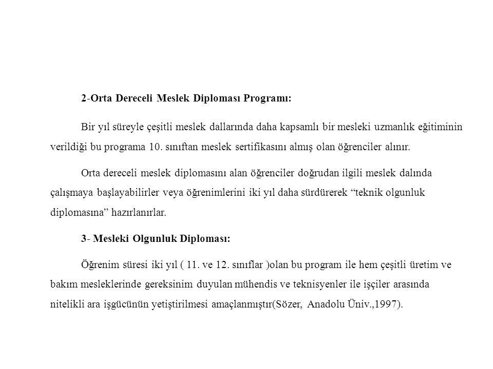 2-Orta Dereceli Meslek Diploması Programı: