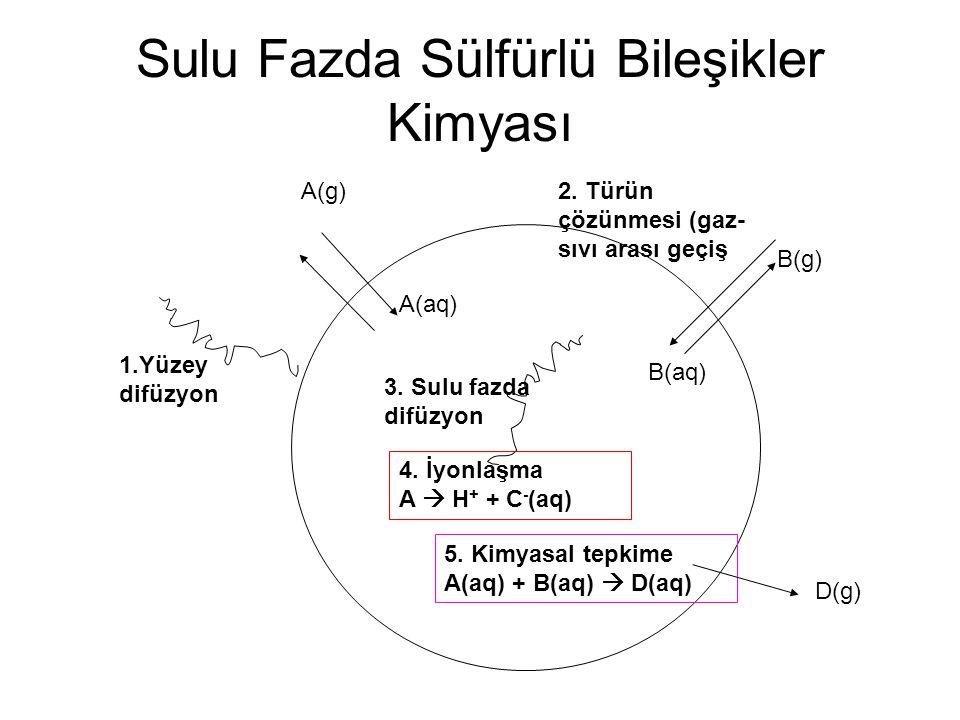 Sulu Fazda Sülfürlü Bileşikler Kimyası