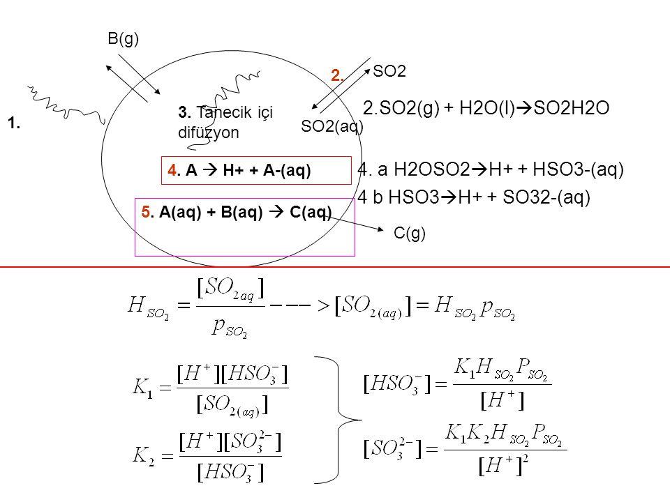 2.SO2(g) + H2O(l)SO2H2O 4. a H2OSO2H+ + HSO3-(aq)