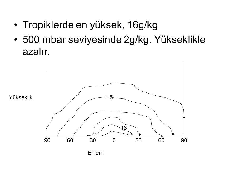 Tropiklerde en yüksek, 16g/kg