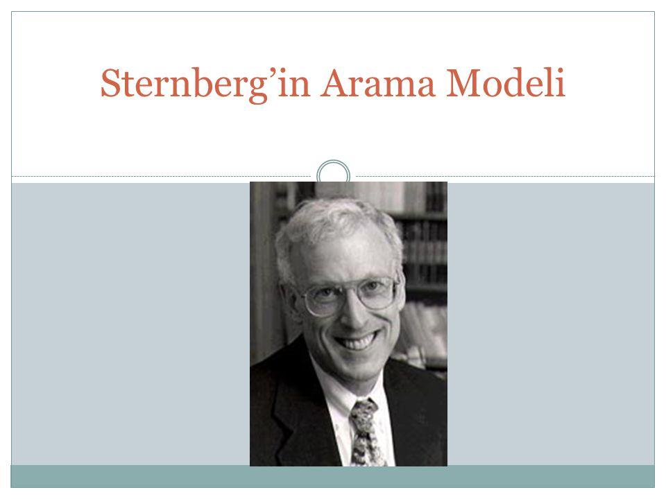 Sternberg'in Arama Modeli
