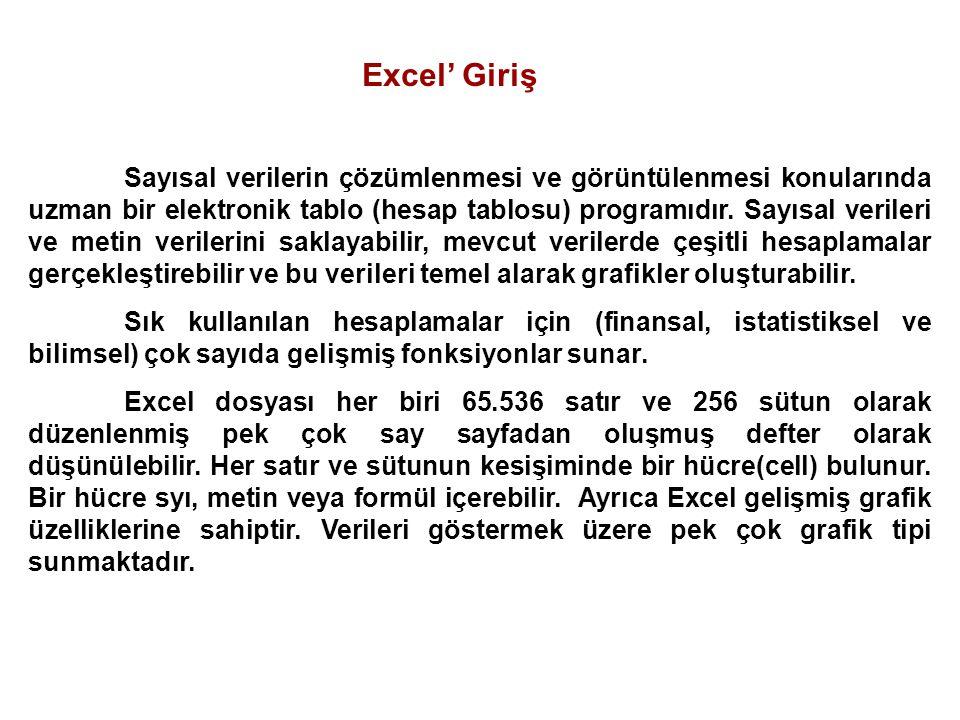 Excel' Giriş