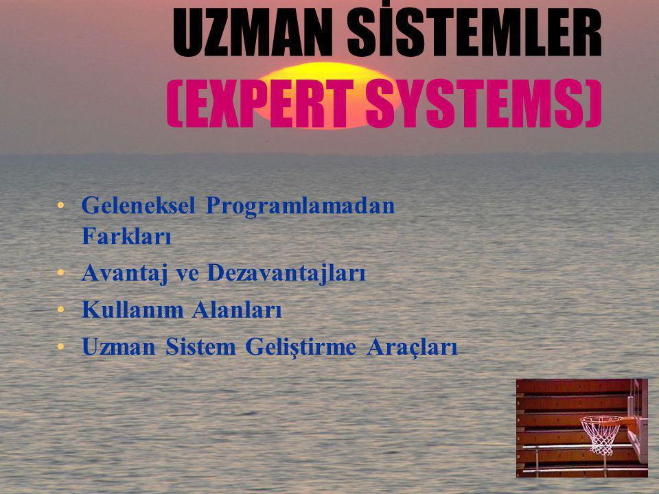UZMAN SİSTEMLER (EXPERT SYSTEMS)