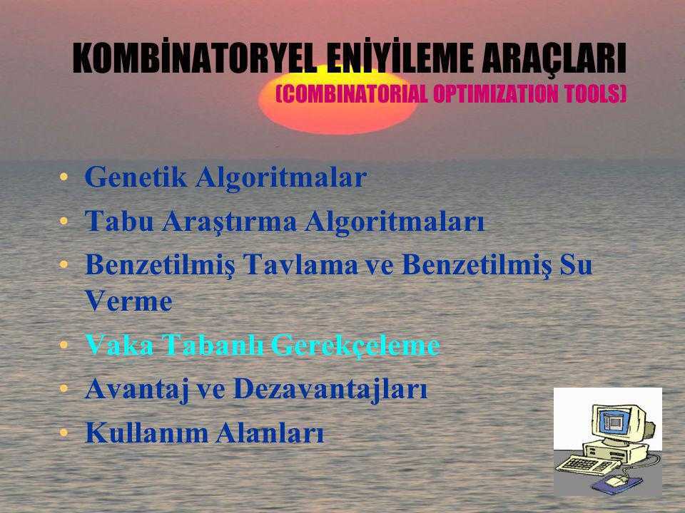 KOMBİNATORYEL ENİYİLEME ARAÇLARI (COMBINATORIAL OPTIMIZATION TOOLS)