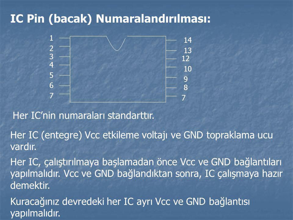 IC Pin (bacak) Numaralandırılması: