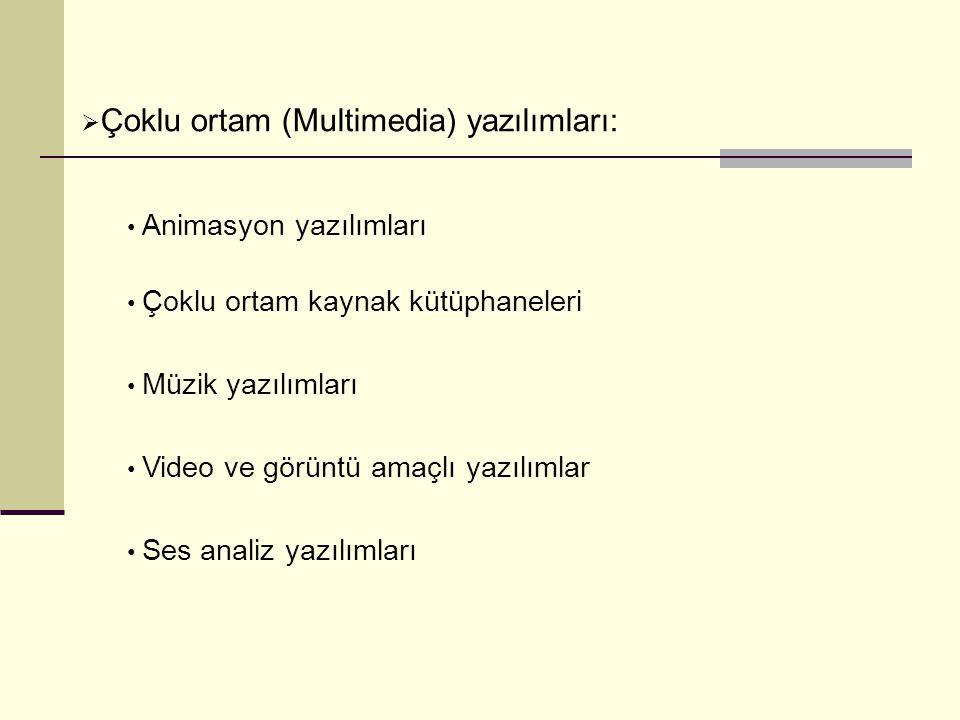 Çoklu ortam (Multimedia) yazılımları: