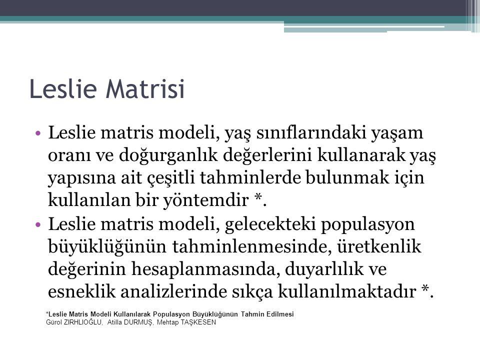 Leslie Matrisi